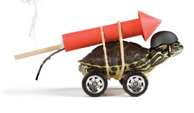 A turtle wearing a helmet, with wheels for feet and a rocket tied to its back.