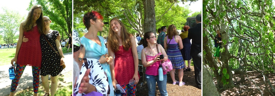 A series of three pictures: two students posing for a picture with their arms around each other; a group of students under a tree; branches of a tree