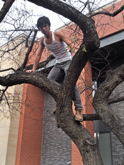 A student climbs a tree outside of the Science Center