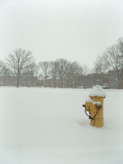 A fire hydrant submerged in snow