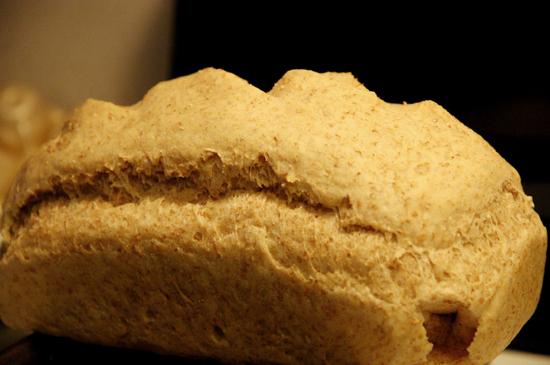 Close up shot of a loaf of bread