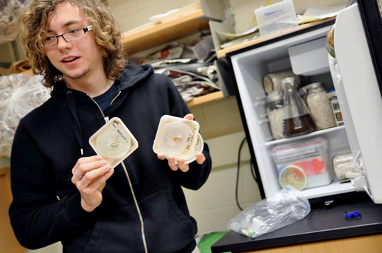 A student pulls out some lab dishes from a small fridge.