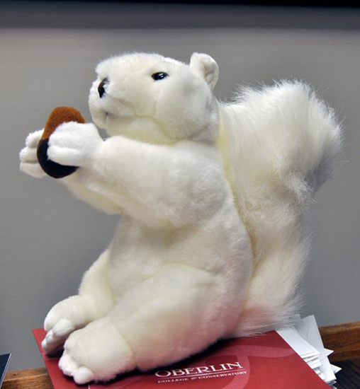 The squirrel seated on a folder on a desk