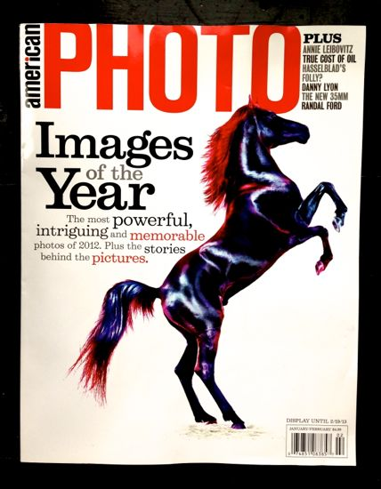 An American Photo magazine cover with a stallion