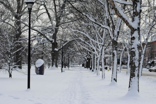 A snowy walkway on Tappan square