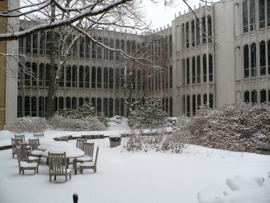 A snowy filled courtyard