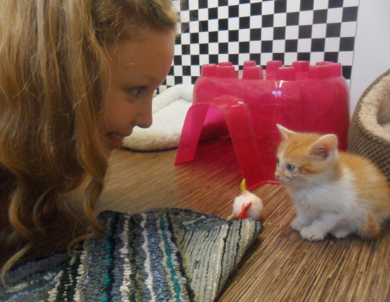 A student and kitten stare at eachother