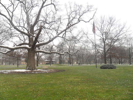 Tappan square with bare trees and remnants of snow.