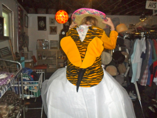 A student holds a tiger themed dress