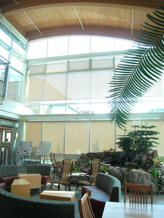 An empty AJLC atrium filled with plants and chairs