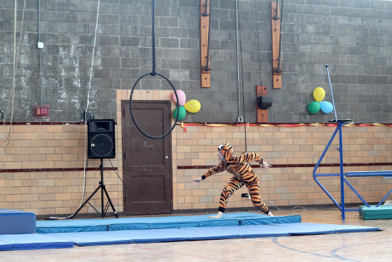 Performer in tiger costume prepares to run