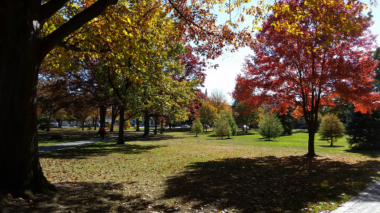 Tappan square with fall foliage