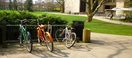 Bikes parked outside of Wilder Hal