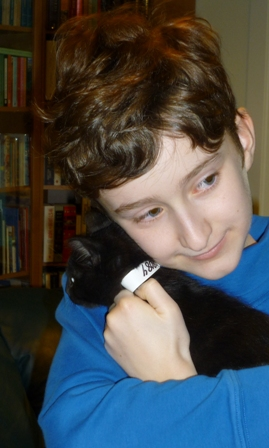 Someone holds the black kitten