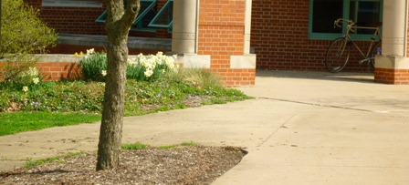 The sidewalk outside of North Hall