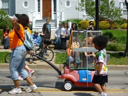 Rabbits in a cage get a ride on a children's wagon