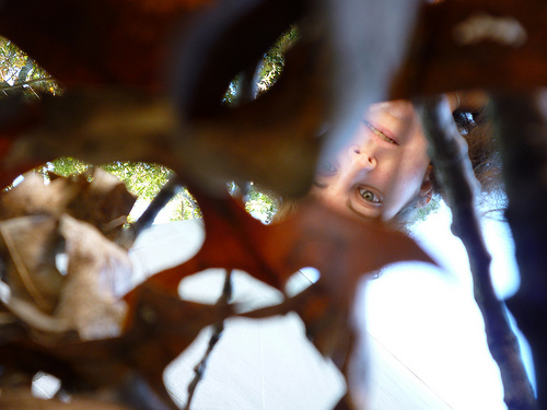 Picture of writer. The lens is peeking through leaves