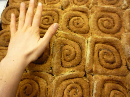 Cinnamon rolls the size of a palm