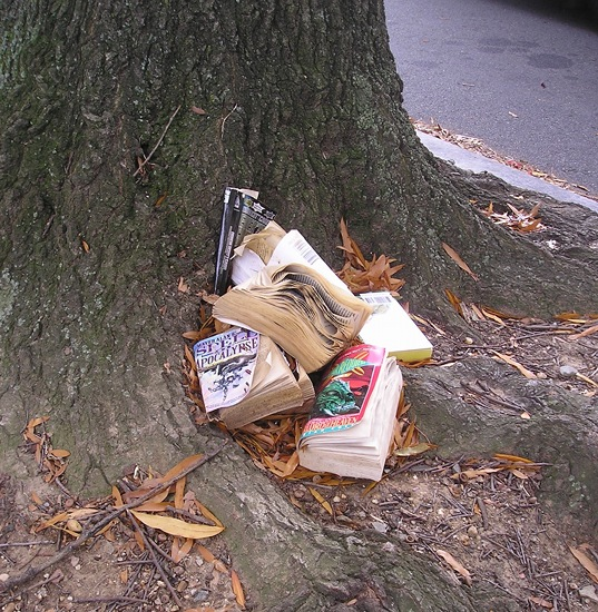 Disheveled books at a tree trunk