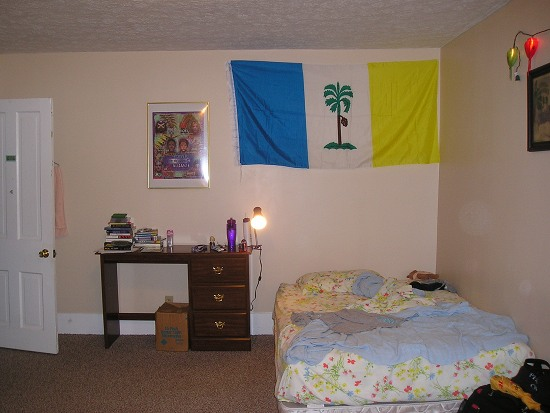 A bedroom with a bed, a flag, and a desk