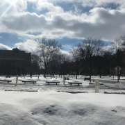 A snowy Oberlin picture