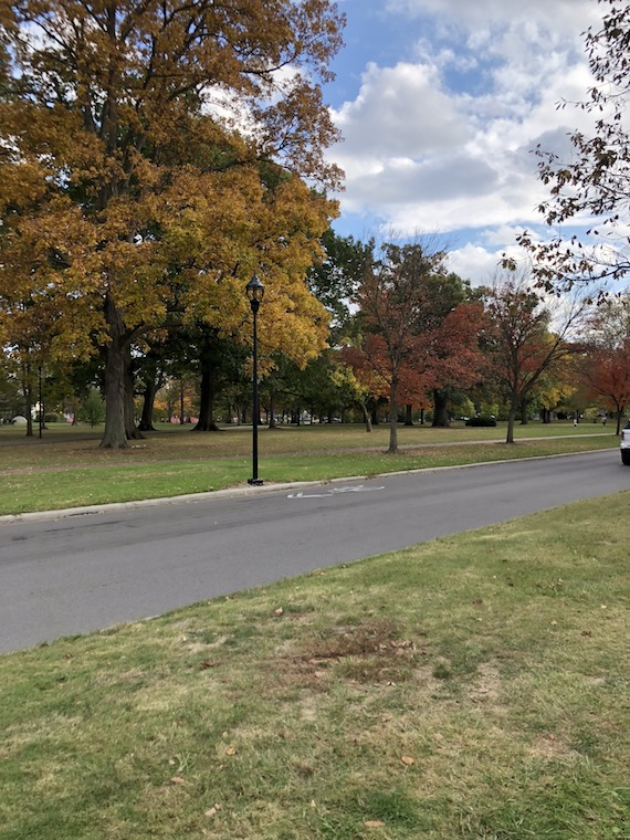 Colorful Fall trees line the road on the edge of Tappan Square