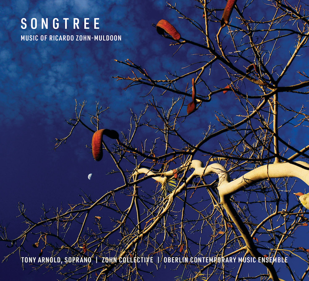 Album cover art shows nearly bare branches before a dark blue sky