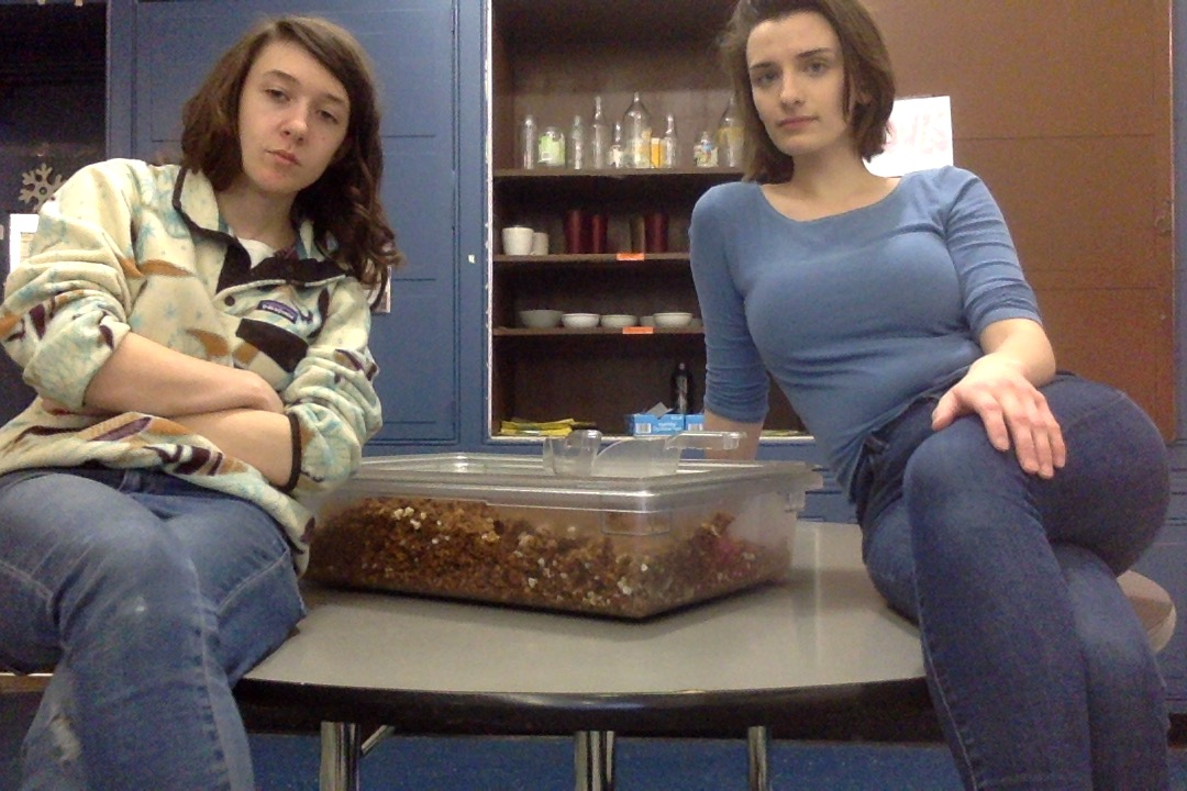 Megan and Lily sit on a table with their closed container of granola.Both girls have their legs crossed, and Lily's arms are also crossed. The two gaze solemnly into the camera.