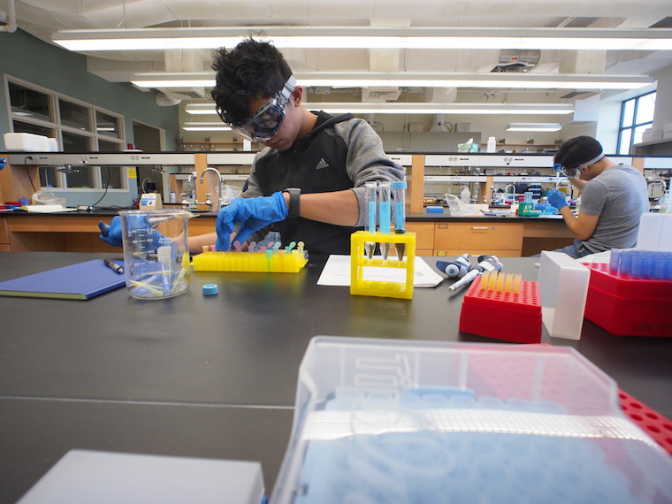 Student working on lab equipment.