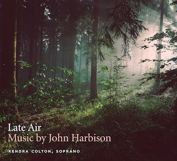 cover of Kendra Colton album Late Air featuring sun shining through a forest path