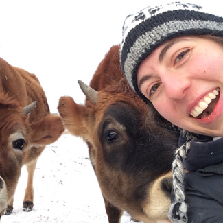 Emma takes a selfie with two calves on a winter day