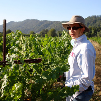 Megan works in a lush vineyard.
