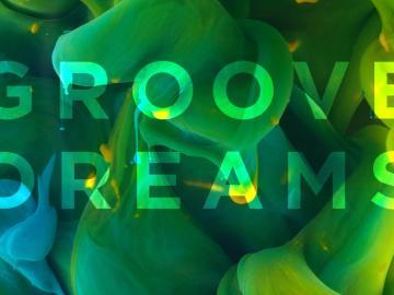 Groove Dreams