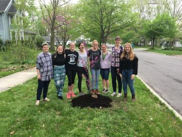 Image of students planting a tree