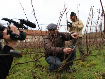 Film crew at a vineyard