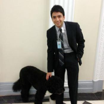 Dressed in a suit, Ashwin pets a dog