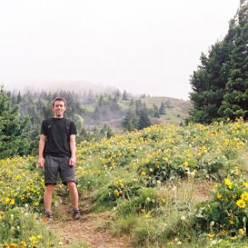 Brook in a field of wildflowers