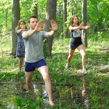 Three people doing tai chi in the woods