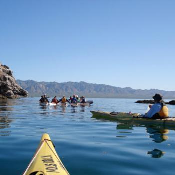 Kayakers on a lake