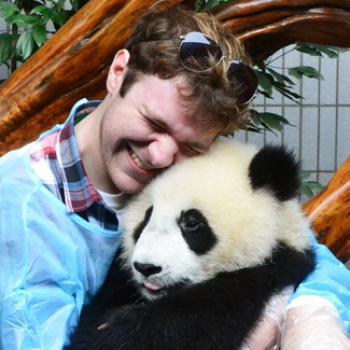 Jacob hugs a young panda