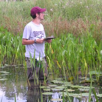 Knee deep in water, Jake studies the surrounding plants and makes notes on a clipboard