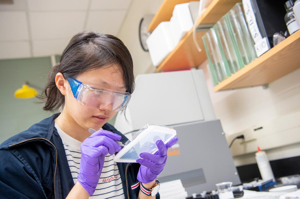 A student in goggles and gloves examines something in a small container.