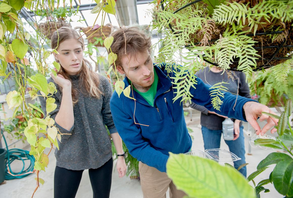 Two students looking at plants in the greenhouse.