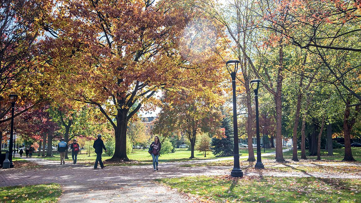 Fall foliage in Tappan Square