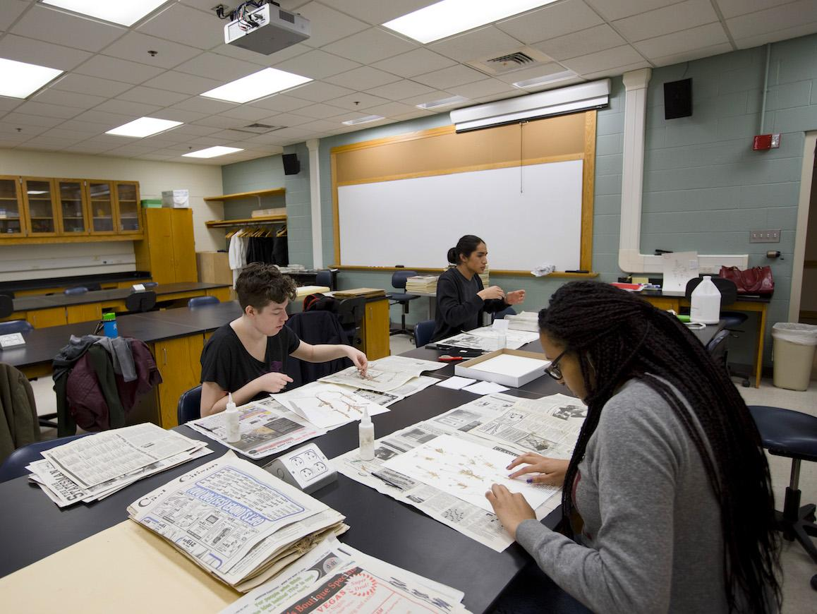 three students at long desk mounting plant specimens