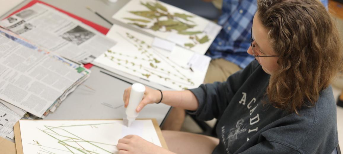 Student glues grass to archival paper.