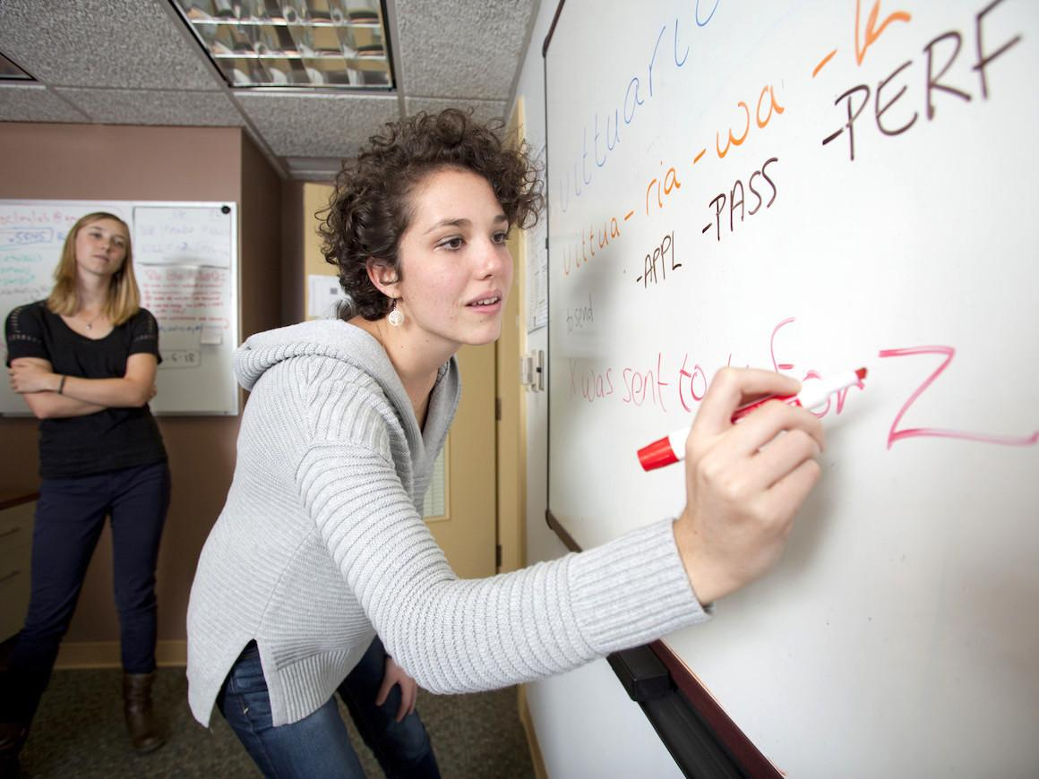 Anthropology students work collaboratively on a whiteboard.