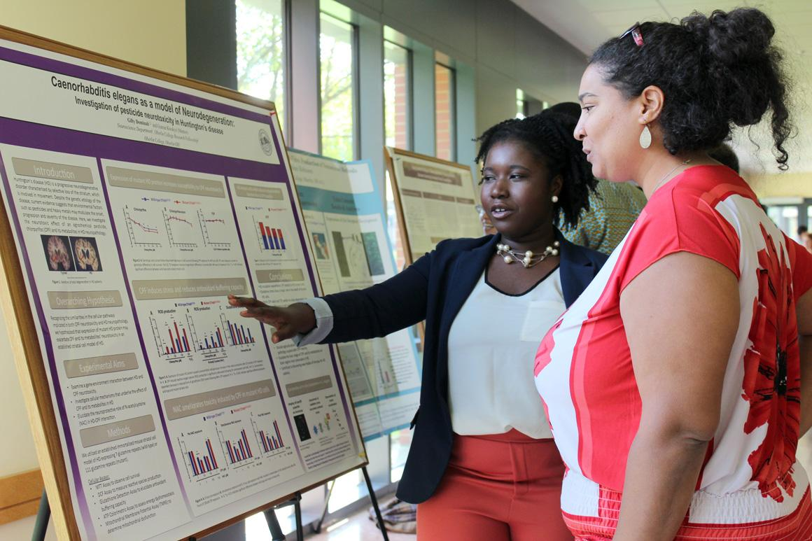 A student and professor look at a research poster together.