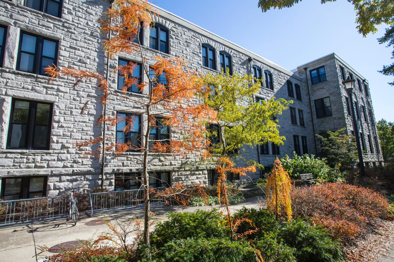 The stone facade of Rice Hall faces young trees and a bike rack.
