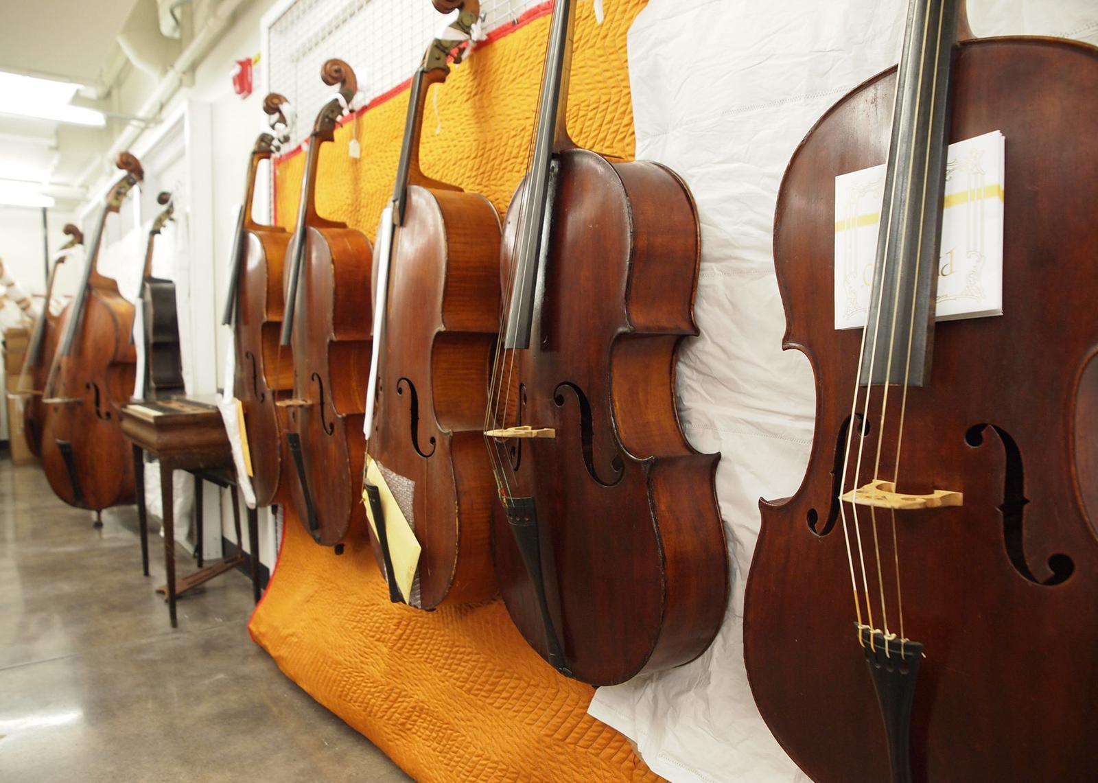 Several cellos are exhibited along a corridor wall.